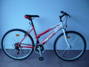 "26"" Steel Frame Mountain Bike (CZ2604)"