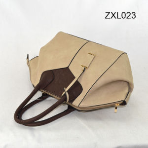 Fashinal Designer The Shoulder and Messenger Lady Hangbag pictures & photos