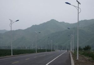 10m 80W LED Lamp Solar Street Light pictures & photos