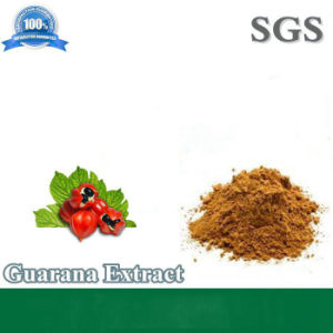 Guarana Extract Powder Manufacturer Fatory Supply Directly pictures & photos