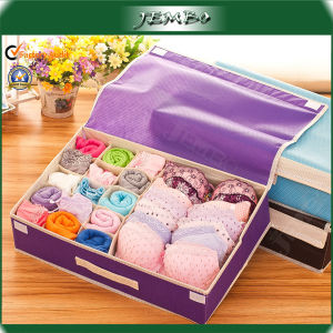 Newly Hanled Purple Printed PP Woven Storage Box pictures & photos