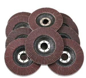 Zirconia Alumina Coated Flap Disc pictures & photos