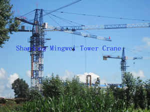 3t Electric Internal Climbing Topkit Tower Crane (QTZ31.5) pictures & photos