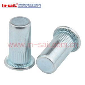 Reduce Head Knurled Body Rivet Nut pictures & photos