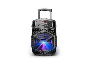8inch Music Speaker Trolley Bluetooth Loudspeaker Al0853 Temeisheng Kvg Guangzhou