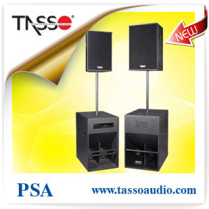 Psa Active Professional Stage Speaker