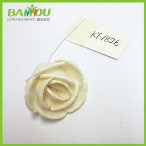 Natural Sola Flower pictures & photos