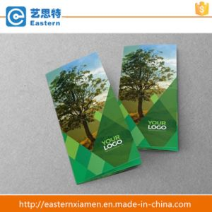 Custom Printed Promotion Printing Folding Booklet/Leaflet/Catalogue/Flyer