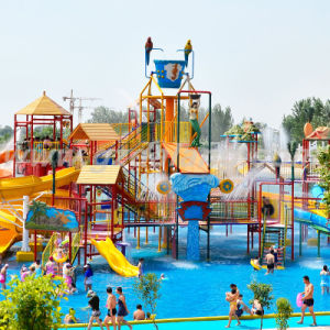 Bird Type Water House with Water Pump (DLWH-1226) , Hot Sale Water Park pictures & photos
