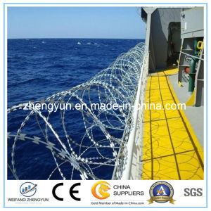 Security Fence Razor Blade Barbed Wire