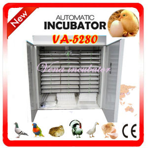 Full Automatic Industrial Commercial Chicken Egg Incubator Va-5280 pictures & photos