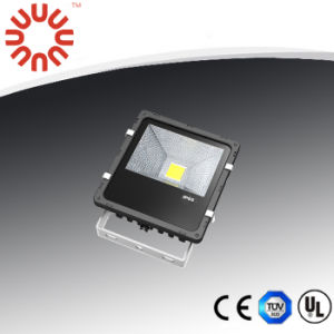 30W LED Floodlight Bridgelux+Meanwell Driver 3years Warranty pictures & photos