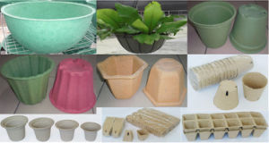 Biodegradable Flower Pots & Seedling Pots-Paper Pulp Molded