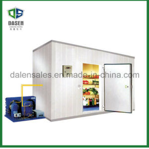 Good Quality Professional Supplier Cold Storage pictures & photos