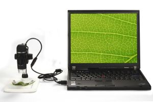 5m 300X USB Digital Microscope with 8 LEDs Brightness Adjustable Measurement Software pictures & photos