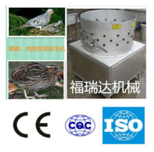 Hot Selling Poultry Machine: Cleaning/Peeling Claw Skin pictures & photos