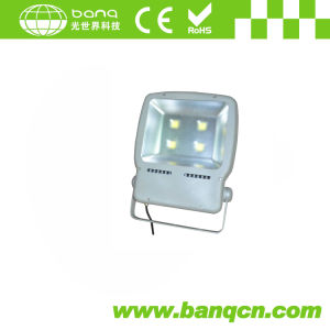 200W LED Flood Light (BQFL-600-200W)