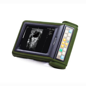 Farm Instrument Pregnancy Ultrasound System for Big Animal Cow Horse pictures & photos