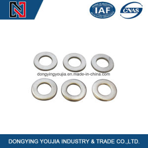 DIN125 Zinc and Plain Washer pictures & photos