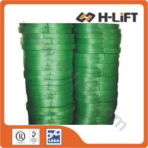 Polyester Webbing /Flat Webbing/Textile Webbing/Sling Webbing pictures & photos