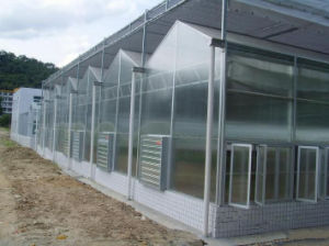 Large Multi-Span Commercial Agriculture Greenhouse pictures & photos