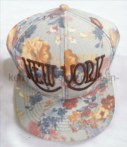 Fashional Popular Embroidered Fitted Cap/Snapback Caps/Hip-Hop (DH-LH73010)