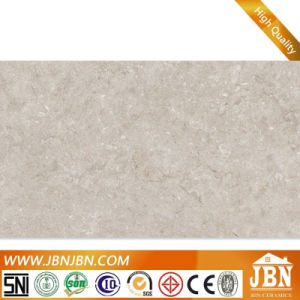 1200X600X4.8mm New Inkjet Glazed Flooring Thin Tiles (JH0202) pictures & photos