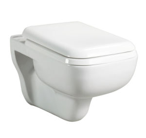 Incroyable Wall Mounted Water Closet Wall Hung Toilet (CB 8109)