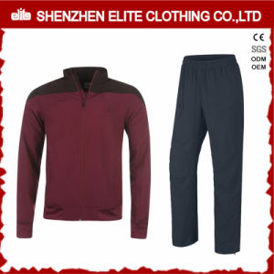 Newest Design Casual Clothing Custom Made Tracksuit (ELTTI-21) pictures & photos
