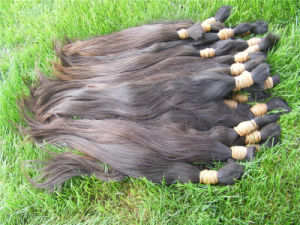 Natural Wave Virgin Brazilian Human Hair Bulk