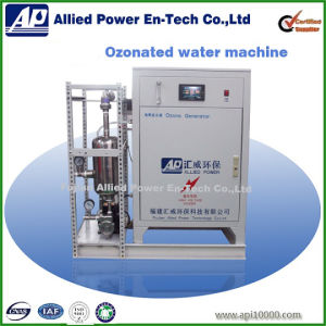 Ozone Water Generator for Plastic Bleaching pictures & photos