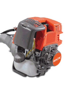 Gasoline Brush Cutter with 4-Stroke (BC310) pictures & photos