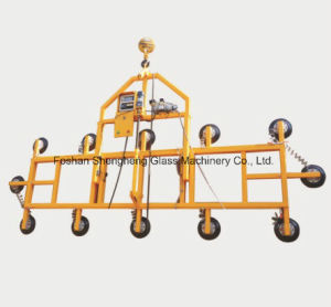 Plate Lifting Equipment pictures & photos