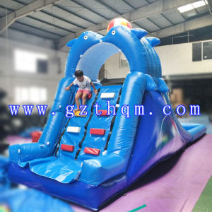 Giant Inflatable Water Slide for Adult/Inflatable Plam Tree Water Slide pictures & photos
