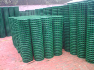1/4′′x1/4′′ PVC Coated Welded Wire Mesh (XM-09) pictures & photos