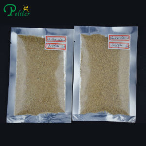 Hight Quality Choline Chloride Protein pictures & photos