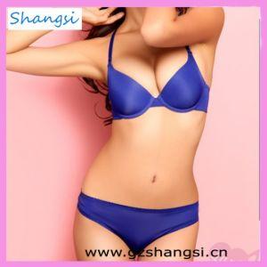 f0d6851907417 China Full Sizes Sexy Fancy Bra Panty Set (BS-SS12043) - China Bra Set