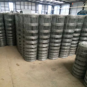 High Steel Galvanized Wire Farm Grassland Netting pictures & photos