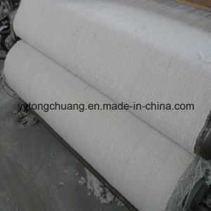 Factory Direct Sales Refactory Ceramic Fiber Cloth with Ss Wire pictures & photos