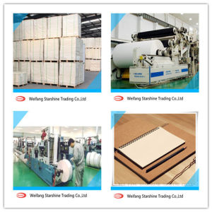 Woodfree Offset Paper for Printing Using