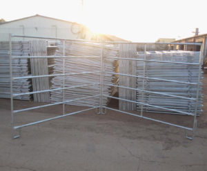 5ftx10FT Galvanized Steel Cattle Corral Panel pictures & photos