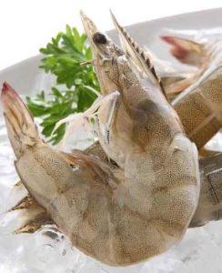China Vannamei Shrimp, Vannamei Shrimp Manufacturers, Suppliers
