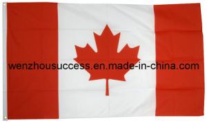 Canada National Flag pictures & photos