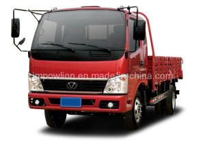 Powlion T10 5 Ton Space Cab Truck (WP1044P10K2Z-1)