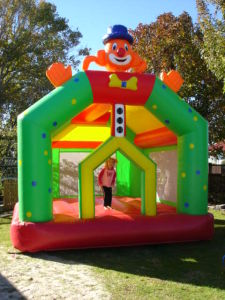 Inflatable Bouncer (FF-699)