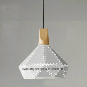 Modern Transparent Wire Lighting Chandelier Pendant Light for Indoor pictures & photos