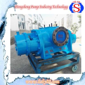 Sn Series Tiple Screw Fuel Oil Pump with SGS Certificate pictures & photos
