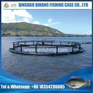 Agricultural Fish Farming Equipment, Fish Cage pictures & photos