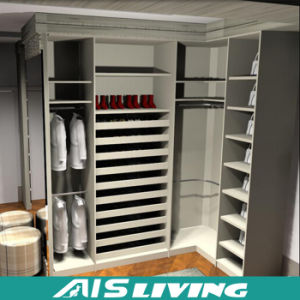 Fashion Design Custom Durable Wardrobe Modular Closet (AIS W88)