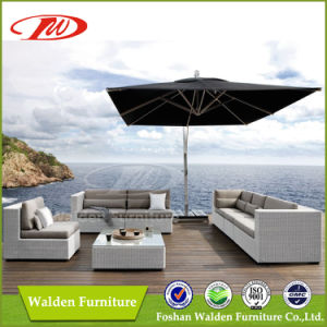 Rattan Sofa, Rattan Outdoor Furniture (DH-8310) pictures & photos